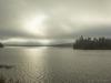 Misty Morning in Algonquin
