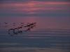 Sunrise over Ontario Lake