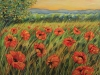 Poppies Field, Oil on Canvas 40 x 30 x 3/4""
